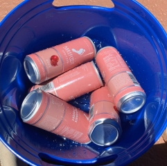 ice melted. all cans empty.